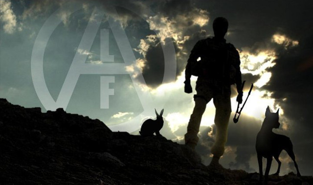 animal liberation front essay Us domestic terrorism animal liberation front project: i think it's a great way to bring about animal liberation, considering the level of suffering.