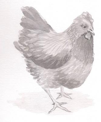 Ethics << All about Veganism << ADAPTT :: Animals Deserve Absolute